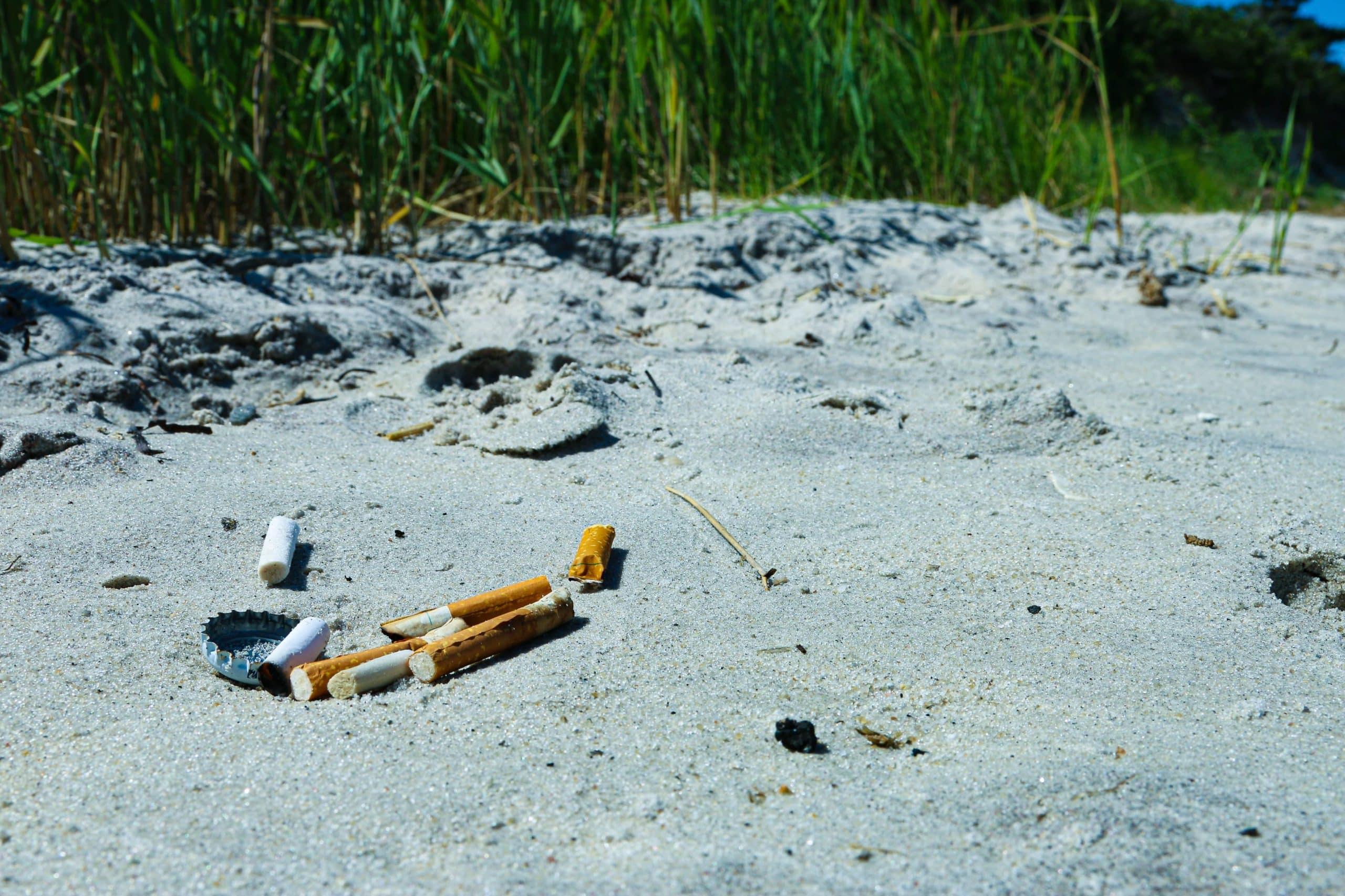 Le mégot : un déchet très polluant ! | Cy-Clope